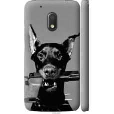 Чехол на Motorola Moto G4 Play Доберман (2745c-860)