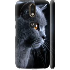 Чехол на Motorola MOTO G4 PLUS Красивый кот (3038c-953)