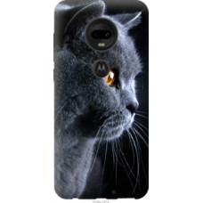 Чехол на Motorola Moto G7 Красивый кот (3038u-1614)