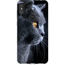 Чехол на Motorola One Power Красивый кот (3038u-1588)