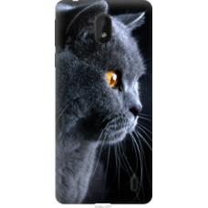 Чехол на Nokia 1 Plus Красивый кот (3038u-1677)