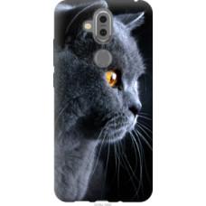 Чехол на Nokia 7.1 Plus Красивый кот (3038u-1606)