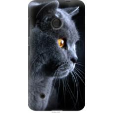 Чехол на Nokia Lumia 530 Красивый кот (3038u-205)