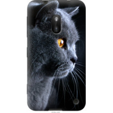 Чехол на Nokia Lumia 620 Красивый кот (3038u-249)