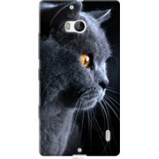 Чехол на Nokia Lumia 930 Красивый кот (3038u-311)
