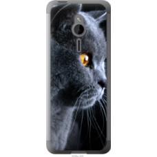 Чехол на Nokia 230 Красивый кот (3038u-339)