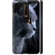 Чехол на Nokia 6.1 Красивый кот (3038c-1628)