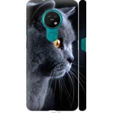 Чехол на Nokia 6.2 Красивый кот (3038c-2018)