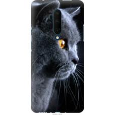 Чехол на OnePlus 7T Pro Красивый кот (3038u-1810)