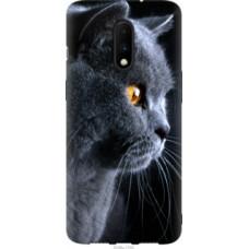 Чехол на OnePlus 7 Красивый кот (3038u-1740)