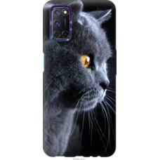 Чехол на Oppo A72 Красивый кот (3038u-2011)
