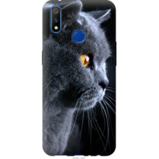 Чехол на Realme 3 Pro Красивый кот (3038u-1863)