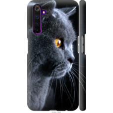 Чехол на Realme 6 Pro Красивый кот (3038c-1893)