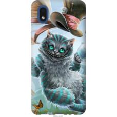 Чехол на Samsung Galaxy A01 Core A013F Чеширский кот 2 (3993c-2065)