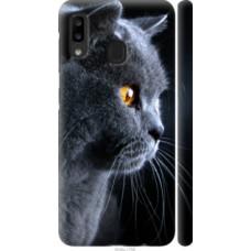Чехол на Samsung Galaxy A20e A202F Красивый кот (3038c-1709)