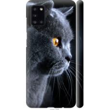 Чехол на Galaxy A31 A315F Красивый кот (3038c-1908)
