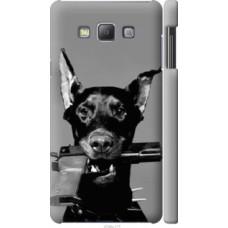 Чехол на Samsung Galaxy A7 A700H Доберман (2745c-117)