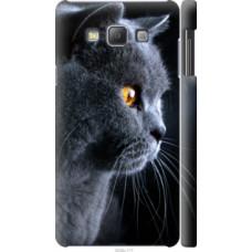 Чехол на Samsung Galaxy A7 A700H Красивый кот (3038c-117)