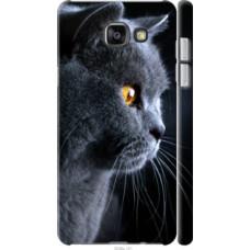 Чехол на Samsung Galaxy A7 (2016) A710F Красивый кот (3038c-121)