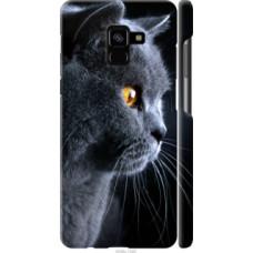 Чехол на Samsung Galaxy A8 Plus 2018 A730F Красивый кот (3038c-1345)