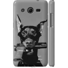 Чехол на Samsung Galaxy Core 2 G355 Доберман (2745c-75)