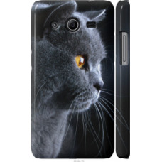 Чехол на Samsung Galaxy Core 2 G355 Красивый кот (3038c-75)
