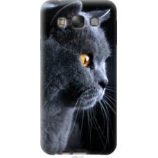 Чехол на Samsung Galaxy E7 E700H Красивый кот (3038u-139)