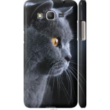 Чехол на Samsung Galaxy Grand Prime VE G531H Красивый кот (3038c-212)