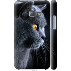 Чехол на Samsung Galaxy J1 (2016) Duos J120H Красивый кот (3038c-262)