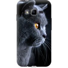 Чехол на Samsung Galaxy J1 Mini Prime J106 Красивый кот (3038u-632)