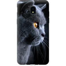 Чехол на Samsung Galaxy J3 2018 Красивый кот (3038u-1501)