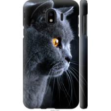 Чехол на Samsung Galaxy J4 2018 Красивый кот (3038c-1487)