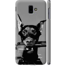 Чехол на Samsung Galaxy J6 Plus 2018 Доберман (2745c-1586)