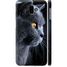 Чехол на Samsung Galaxy J6 Plus 2018 Красивый кот (3038c-1586)