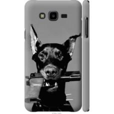Чехол на Samsung Galaxy J7 Neo J701F Доберман (2745c-1402)