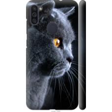 Чехол на Samsung Galaxy M11 M115F Красивый кот (3038c-1905)
