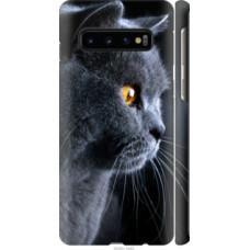 Чехол на Samsung Galaxy S10 Красивый кот (3038c-1640)