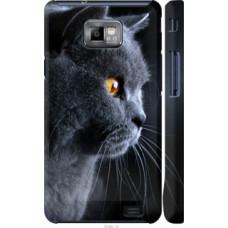 Чехол на Samsung Galaxy S2 Plus i9105 Красивый кот (3038c-71)