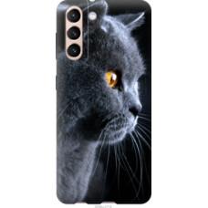 Чехол на Samsung Galaxy S21 Красивый кот (3038c-2114)