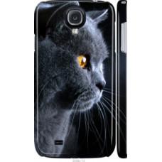 Чехол на Samsung Galaxy S4 i9500 Красивый кот (3038c-13)
