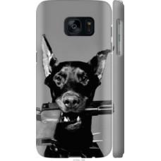 Чехол на Samsung Galaxy S7 G930F Доберман (2745c-106)
