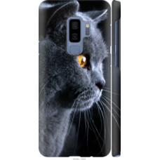 Чехол на Samsung Galaxy S9 Plus Красивый кот (3038c-1365)