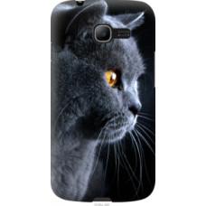 Чехол на Samsung Galaxy Star Plus S7262 Красивый кот (3038u-360)
