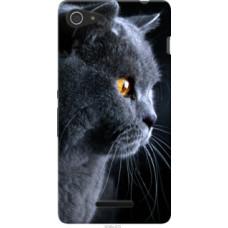 Чехол на Sony Xperia E3 D2202 Красивый кот (3038u-672)