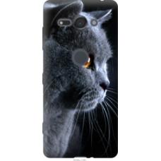 Чехол на Sony Xperia XZ2 Compact H8324 Красивый кот (3038u-1381)