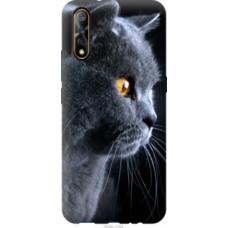 Чехол на Vivo V17 Neo Красивый кот (3038u-1764)