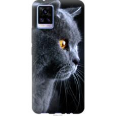 Чехол на Vivo V20 Красивый кот (3038u-2127)