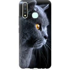 Чехол на Vivo Y19 Красивый кот (3038u-630)