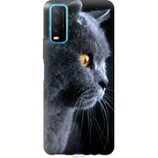 Чехол на Vivo Y20 Красивый кот (3038c-2078)