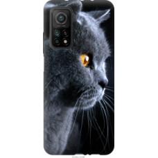 Чехол на Xiaomi Mi 10T Красивый кот (3038c-2096)
